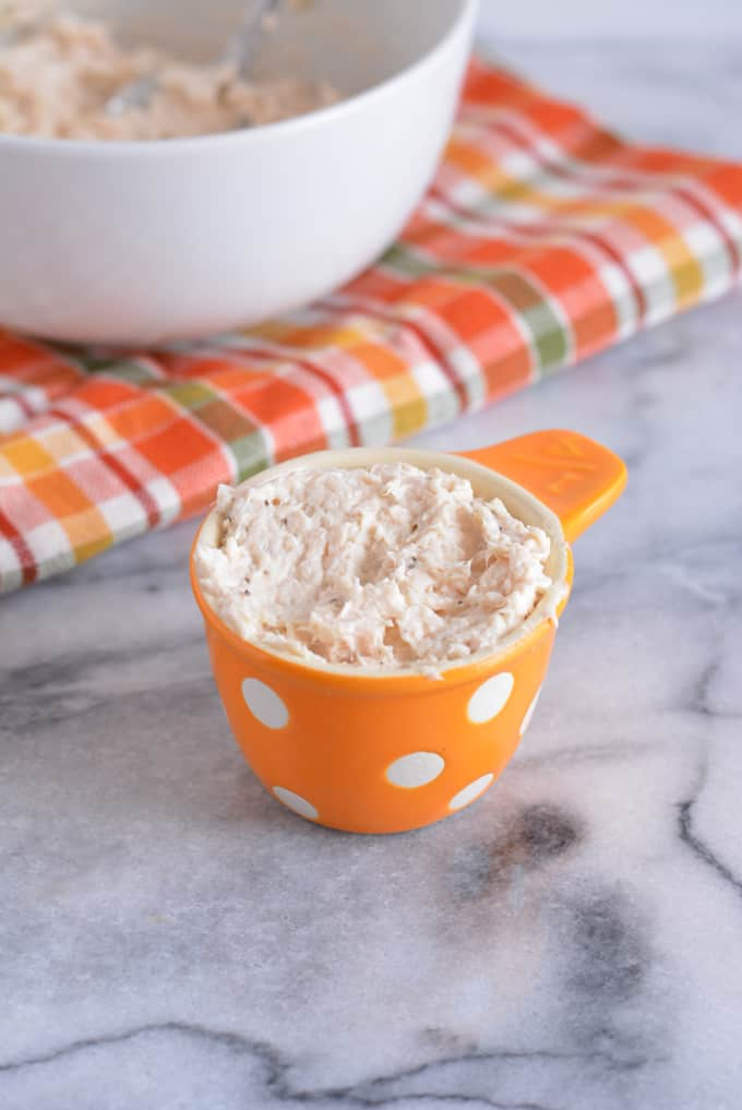 Pureed Chicken Salad